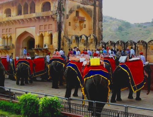 Elephant Ride in royal India