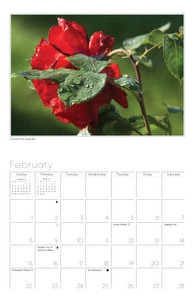 inside shot of Flowers Wall Calendar