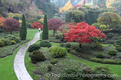 the sunken garden in Fall at Butchart Gardens desktop photo