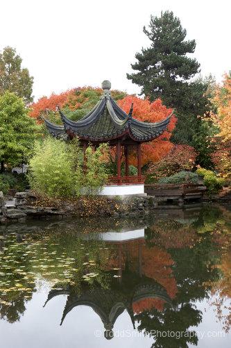 Ting - Chinese Pavilion
