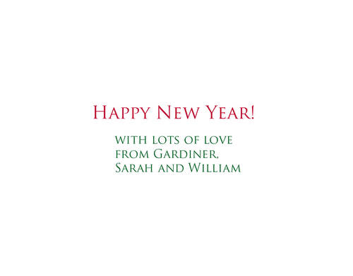 sarah's Christmas card 2008