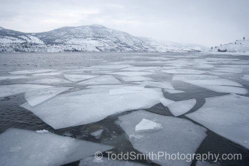ice sheets on Lake Skaha