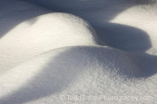 snow dunes in my back yard