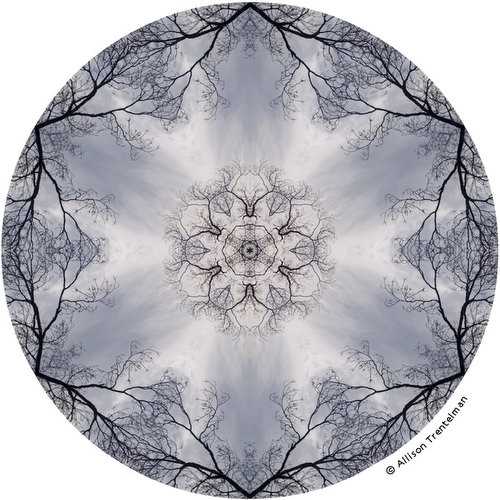 nature mandala of allison trentelman